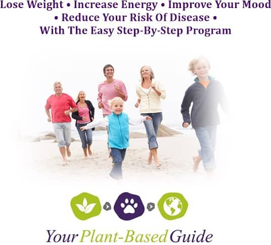 your plant based guide vegan training program,how to go vegan,easy way to go plant based,go plant based and make sure you get all of your nutrients,how to go plant based the healthy way
