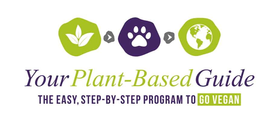 Your Plant-Based Guide vegan training program
