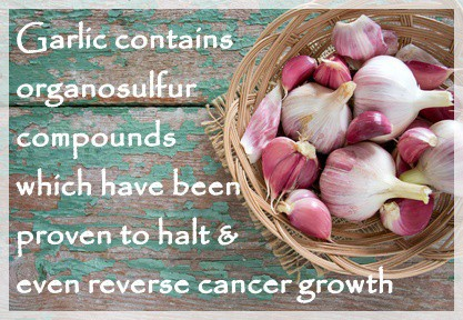 How Garlic Prevents And Reverses Cancer
