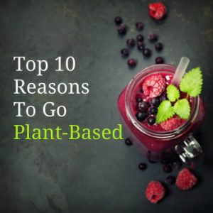 top 10 reasons to go plant based,top 10 reasons to adopt a plant based diet,top 10 reasons to go vegan,why you should go plant based,why you should go vegan,why should I go plant based,what are the reasons to go plant based
