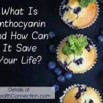 anthocyanin is a phytonutrient in plant foods that prevents and reverses disease